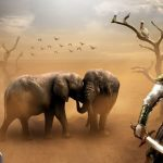 11 Binatang Yang Disebut Dalam Al Quran